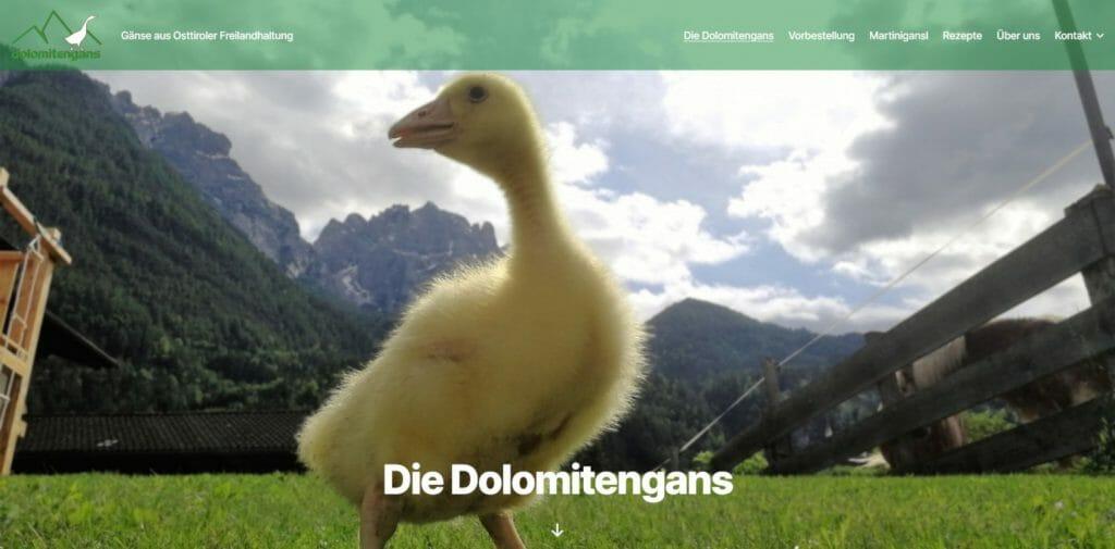 Die Dolomitengans www.dolomitengans.at